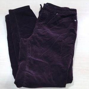 Buffalo Cord Skinny icon jeans